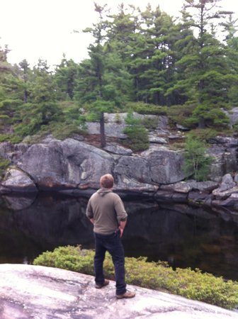 Hiking The Gurd Lake Trail Picture Of Grundy Lake Provincial Park Britt Tripadvisor See what gurd (gurd1) has discovered on pinterest, the world's biggest collection of ideas. tripadvisor