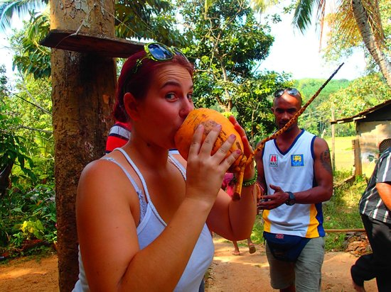 Coconut Tours - Private Day Tours: Anja and Chamera...we got fresh King Coconut right from the tree!