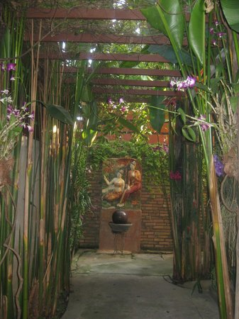 Shewe Wana Boutique Resort and Spa: Beautiful pathways and orchids everywhere