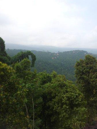 Taman Ayu Home Stay: 트래킹