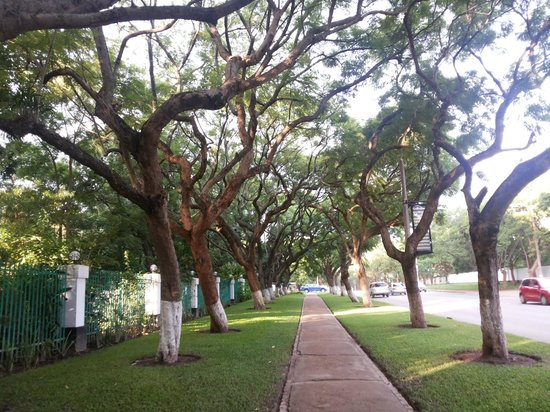 Taj Pamodzi Hotel: Beautiful walkways outside Taj Pamodzi