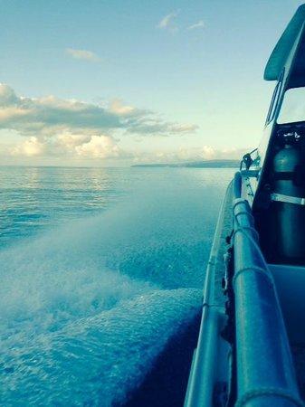 Makena Coast Dive Charters: Molokini, dead ahead!