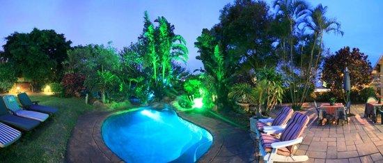Carter's Lodge: Tropical garden around pool