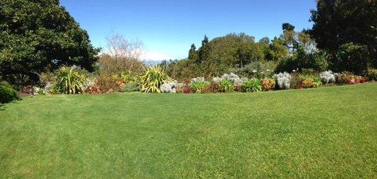 Kula Botanical Garden : grassy knoll