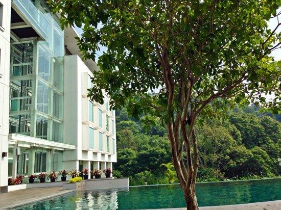 Padma Hotel Bandung: Poolside view