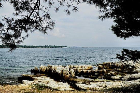 Iles de Lerins: Уединение