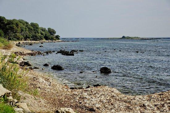 Iles de Lerins: Тизий остров
