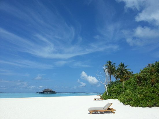 The Sun Siyam Iru Fushi Maldives: Let's go here!