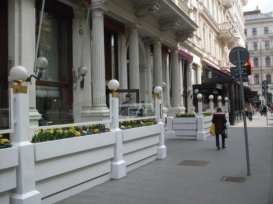 Café Sacher Wien: Frühlingsblumen vor dem Hotel Sacher