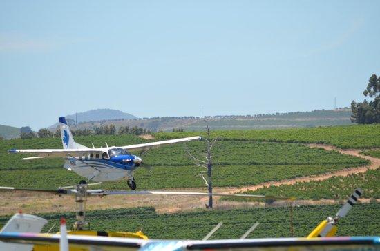 Rusthuiz Guest House: Beautful Stellenbosch Airfield