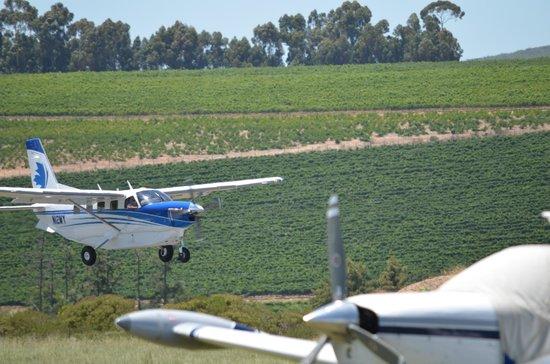 Rusthuiz Guest House: A Kodiak landing at Stellenbosch Airfield