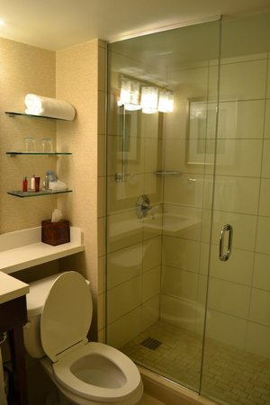 Tampa Airport Marriott: bathrom with walk in shower