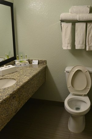 Holiday Inn Express Hotel & Suites Ft Lauderdale - Plantation : roomy bathroom