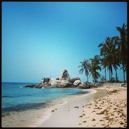 Centara Villas Samui : Beach