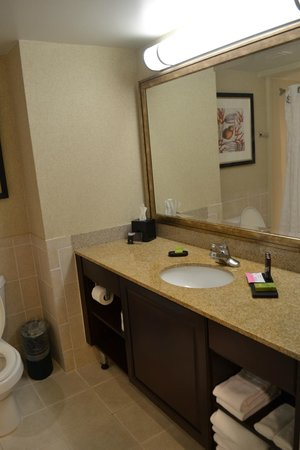 Embassy Suites by Hilton Fort Myers - Estero: sink