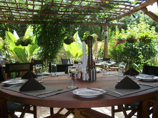 Aladdin Restaurant : Terrace