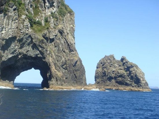 Paihia Pacific Resort Hotel: Hole in rock trip