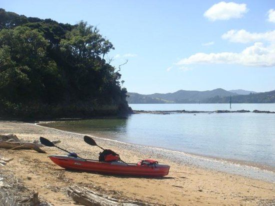 Paihia Pacific Resort Hotel: Island just out from Paihia - we had own kayak but you can hire.