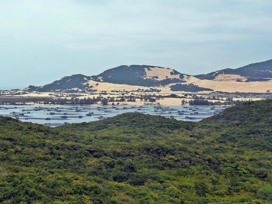 Whale Island Resort : Aussicht von einer Inselanhöhe auf ein Teil des Fischerigebietes und die Sanddünen