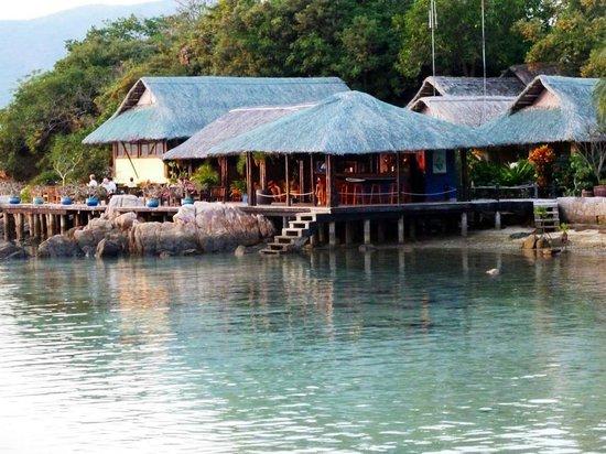 Whale Island Resort : Restaurant und Bar