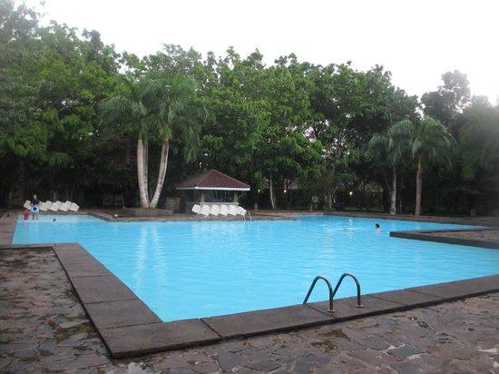 Palm Garden Village Hotel : Pool