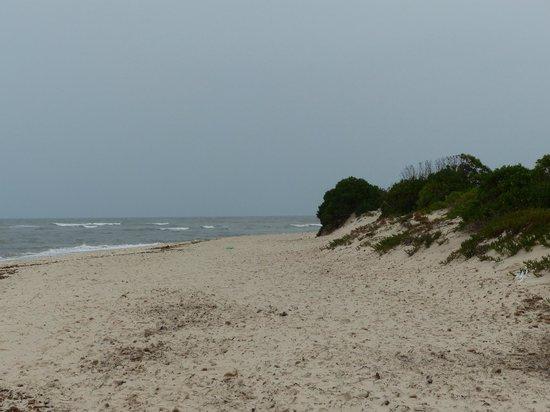 Golf Residence Hotel: Strandje nabij de haven - Port El Kantaoui