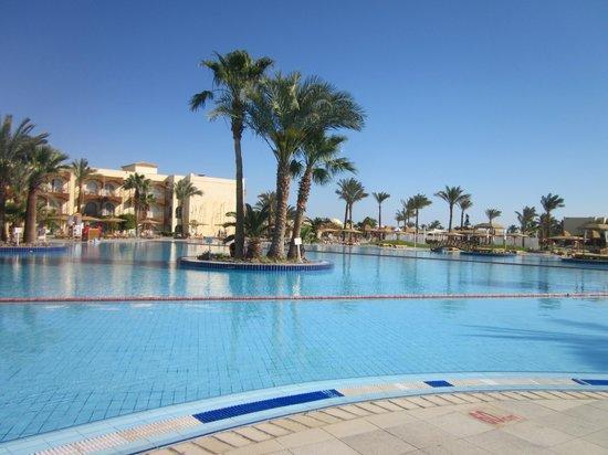 The Desert Rose Resort: Бассейн