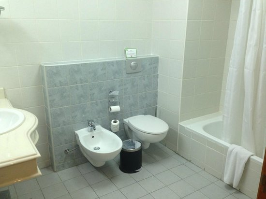 Geneva Hotel: Toilet