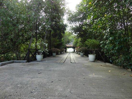 Vivanta by Taj Rebak Island, Langkawi: lovely..