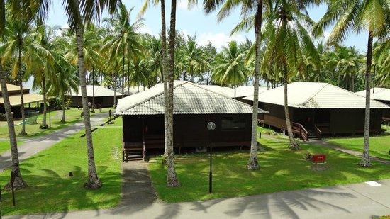 Damai Beach Resort : Вид из нашего номера