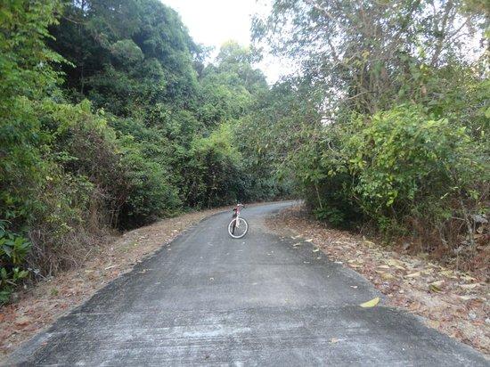 Vivanta by Taj Rebak Island, Langkawi: cycle..