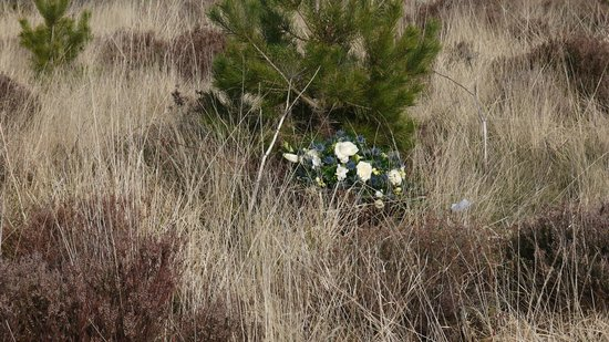 Culloden Battlefield: wreaths still laid by the white cockade society