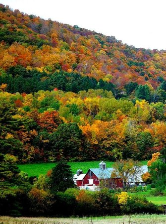Eddington House Inn: Fall Foliage in Southern Vermont