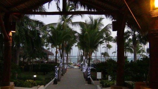Club Med Punta Cana : Vue sur la mer de la réception