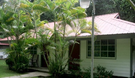 Pacific Treelodge Resort : Rooms situated in small bungalows