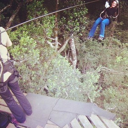 Tsitsikamma Canopy Tours: Almost there