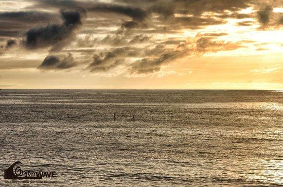 Green Wave Surf School: SUP sunset