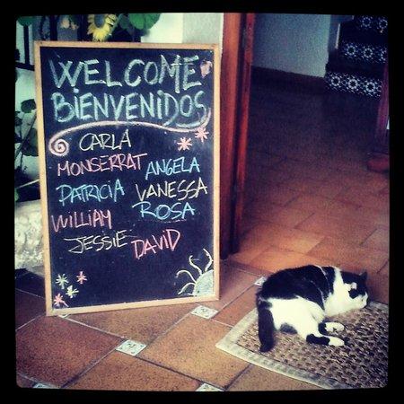 The Melting Pot Hostel Tarifa: Eingangsbereich, jeder Gast wird persönlich willkommengeheissen
