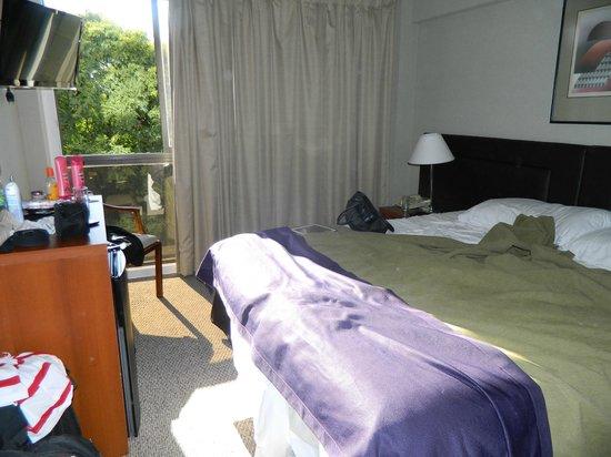 Hotel Bisonte Libertad : Quartos com janelas grandes