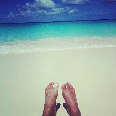 Aqua Mania Adventures : Happy Feet at Shoal Bay Beach