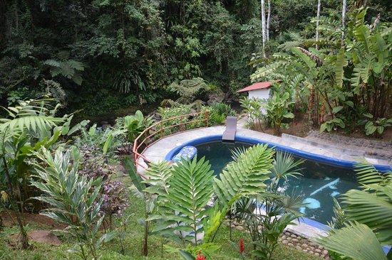 Agua Inn: Pool
