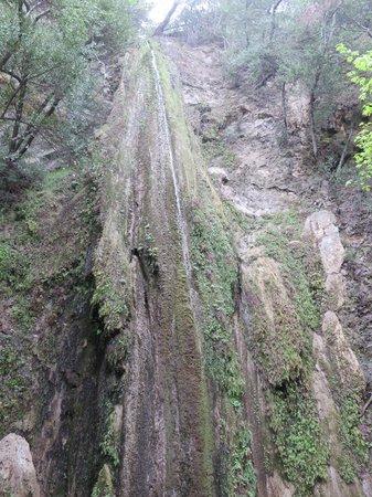 Nojoqui Falls Park: Nojoqui Falls March 2014