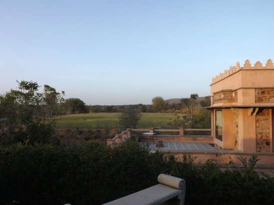 Tree of Life Resort & Spa Jaipur : view from the garden