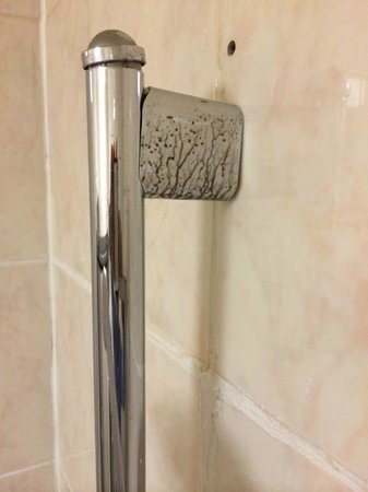 Brunel Hotel: Shower head mounting