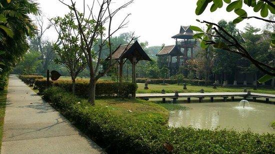 Siripanna Villa Resort & Spa: Rice padi
