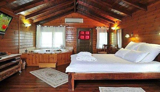 Bikta Banof: Main room