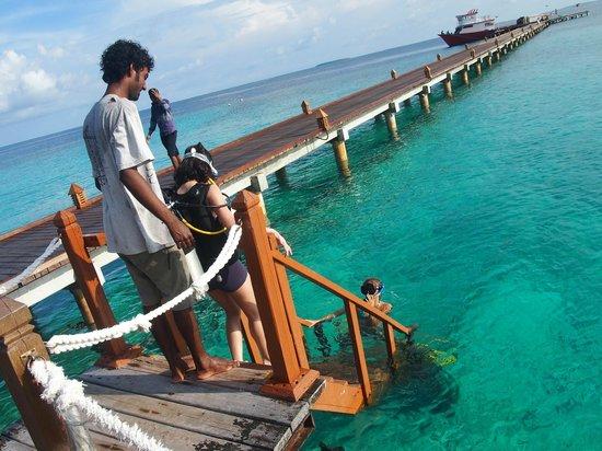 Adaaran Prestige Water Villas: introductory dive