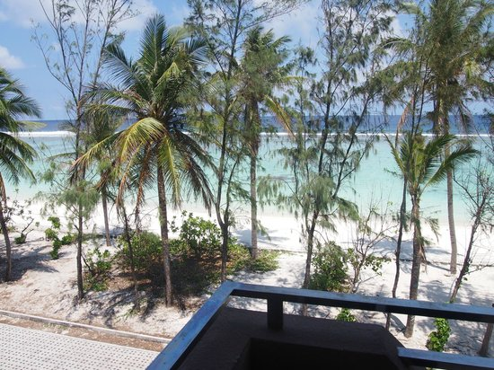 Ripple Beach Inn: view from room