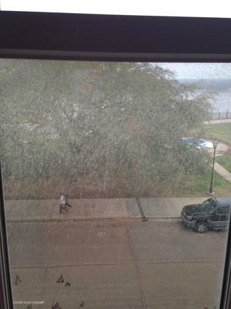 Natchez Grand Hotel : Our windows were so dirty, we really couldn't enjoy the river view.