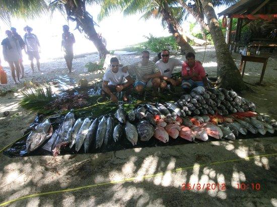 Angel Tours Pty LTD: Deep Sea Fishing Catch